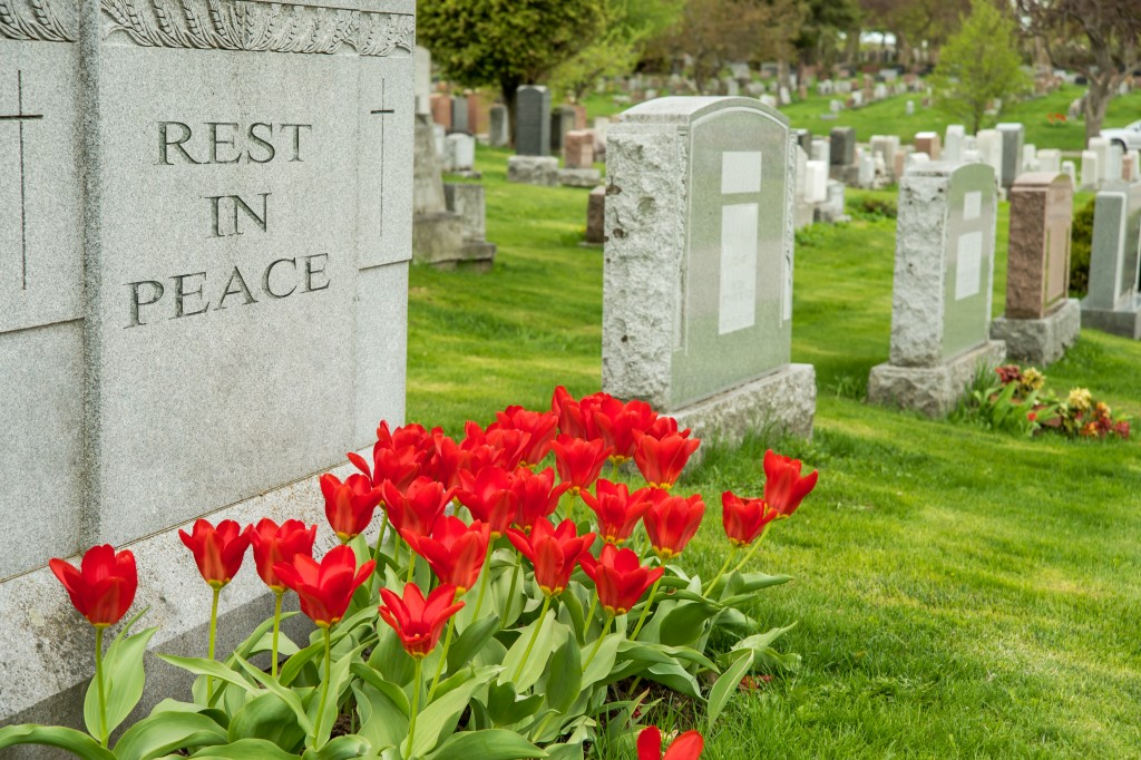 a tombstone with tulips
